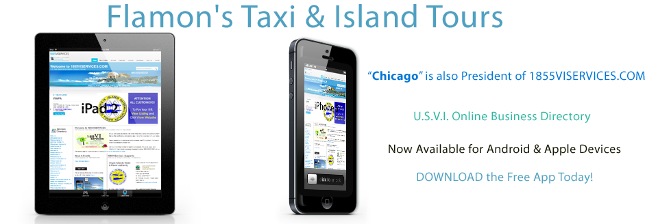 THE REAL DEAL UNITED STATES VIRGIN ISLANDS - Flamon's Taxi & Island Tours